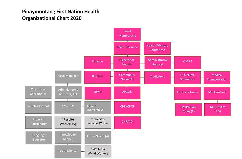 PFN ORG CHART 2020.jpg