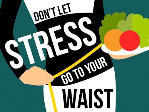 Stress Weighs Heavily On the Mind and Body!