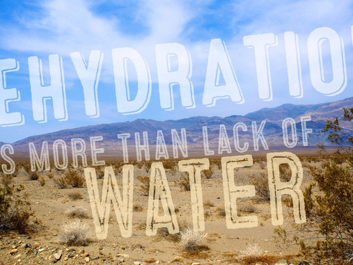 If Water Is No Guarantee You Will be Hydrated, What Is?