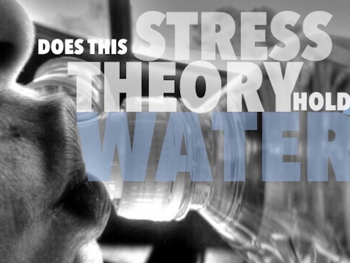 Water Is the Most Natural Body Requirement But, Can It Be What Is Stressing You Out?