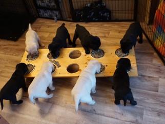Essen geht auch am Tisch..