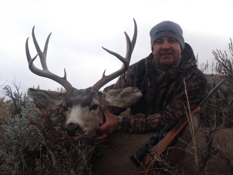 deer 26