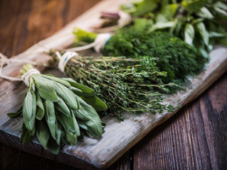 5 Herbs for Congestion and Cough