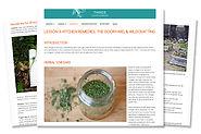 Study Herbs Online - Herbal Courses