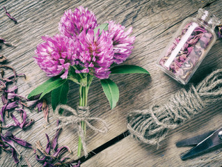 The Language of Flowers: Herb Symbolism