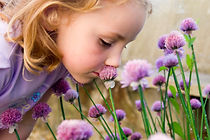 Kid's Guide to Growing Medicinal Herbs