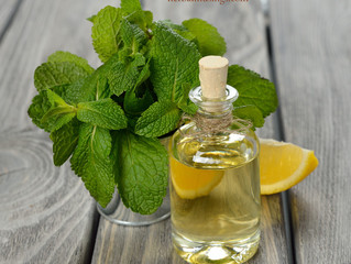 Lemon Balm & Orange Body Oil