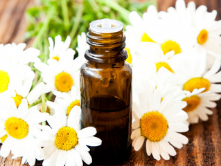 How to Make a Chamomile Tincture