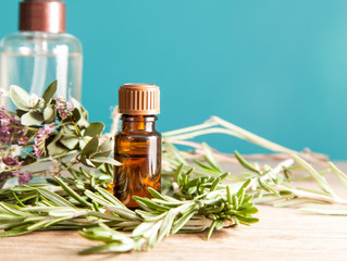 Rosemary & Citrus Concentration Aroma Oil