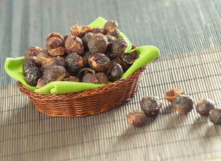 Nuts About Soap Nuts