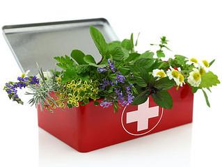 Making an Herbal First Aid Kit