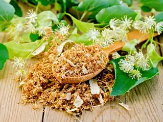 Elder Blossom & Green Tea Lotion