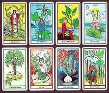 Get a Tarot Reading with the Herbal Tarot