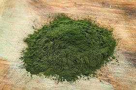 Buy Spirulina - Blue-Green Algae
