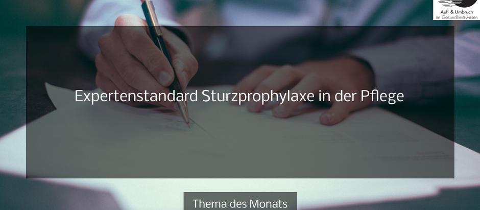 Expertenstandard Sturzprophylaxe in der Pflege