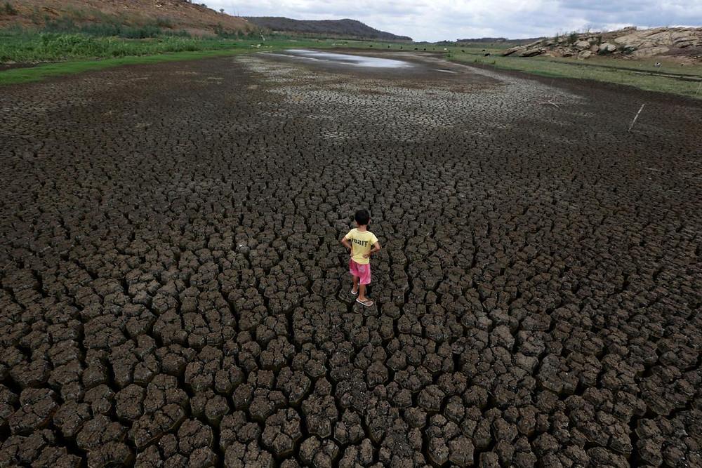 巴西正在與時間競賽,但無力拯救受旱災襲擊的城市,及瀕臨滅絕的莊稼