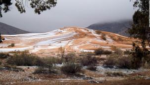 撒哈拉沙漠 : 首次錄得白雪紛飛!X行星效應!小冰河時期預兆!北極南移!南北極磁場臨近逆轉!