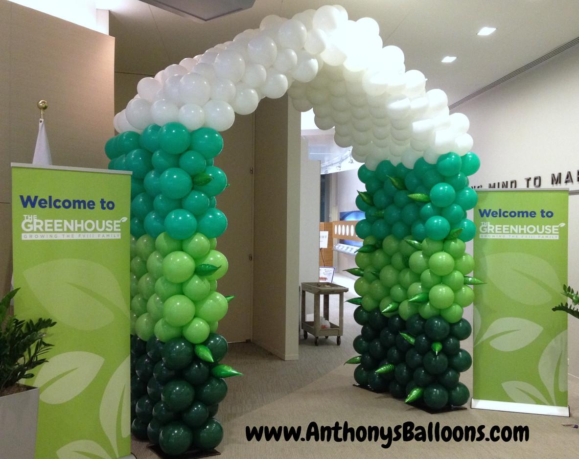 Greenhouse Balloon Tunnel