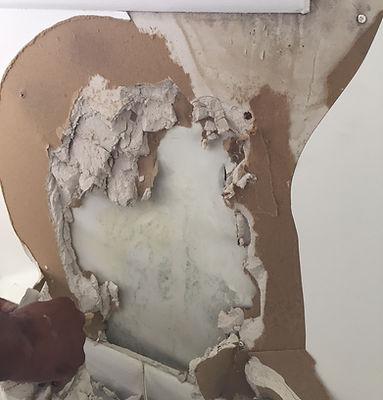 Mold inside the wall.jpg