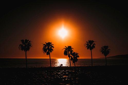 Tirages limités - Mémoires de Los Angeles #4