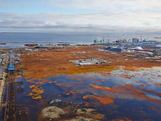 Ямальские ученые отправились в экологическую экспедицию в район порта Сабетта