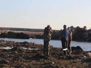 Ученые исследовали новые воронки на Ямале