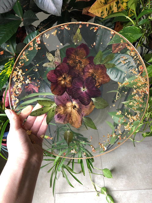 Hellebore Cycle of Life Tray