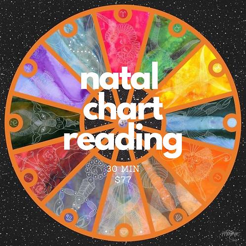 Natal Chart Reading (30 min)