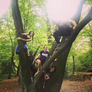 Tree climbing jungle runners