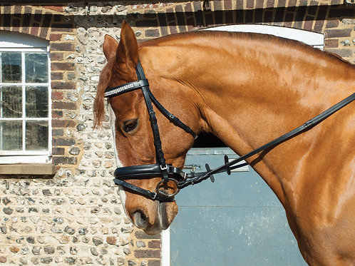 Hertiage English Leather Crystal 'Comfort' Bridle with Flash Noseband