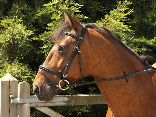 Windsor Leather Comfort Bridle with Crank Noseband