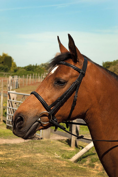 Hertiage English Leather Bridle with Fancy Stitched Cavesson Noseband