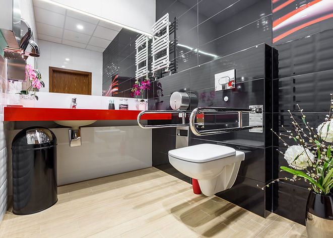 Modern, black and white handicap bathroo