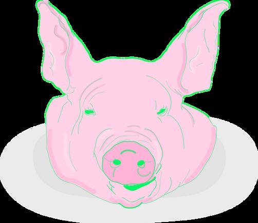 pig head.png