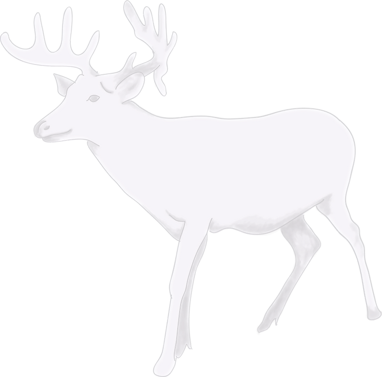 WHITE%20DEER_edited.png