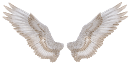 wings_i_by_suicideomen_db199ic-pre.png