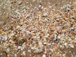 Пляж и море п. Береговое
