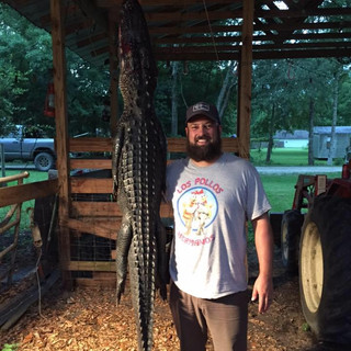 FL Gator Trapping Agent