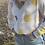 Thumbnail: Daisy Sweater