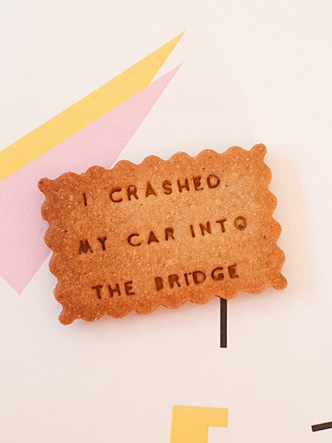 I-CRASHED-MY-CAR-INTO-THE-BRIDGE-01.jpg