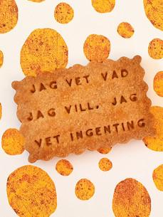 JAG-VET-VAD-JAG-VILL-JAG-VET-INGENTING-0