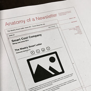 anatomy of a newsletter