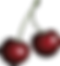 cherries-158241_1280_edited.png