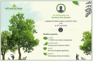 Parcourez notre forêt