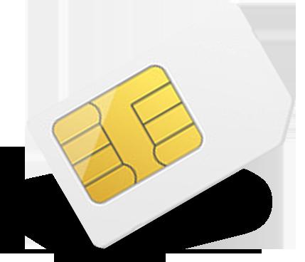 Carte m2m trio 5Mo roaming - Idéale ou Solar-Log 300