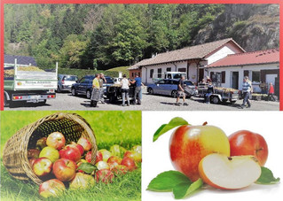 Opération Jus de Pommes - 1920 kilos récoltés - 960 litres obtenus!