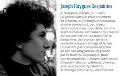 Joseph Huygues Despointes