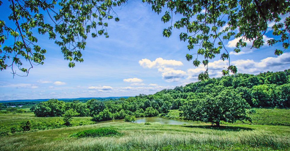 Avalon - Overlook Farm