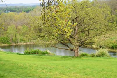 Overlook & Avalon Meadow - Overlook Farm