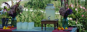 Rackheath House & Gardens - Overlook Farm